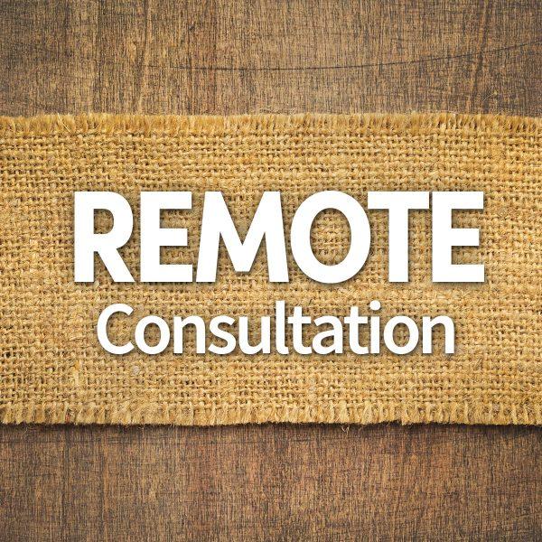 remote consultation