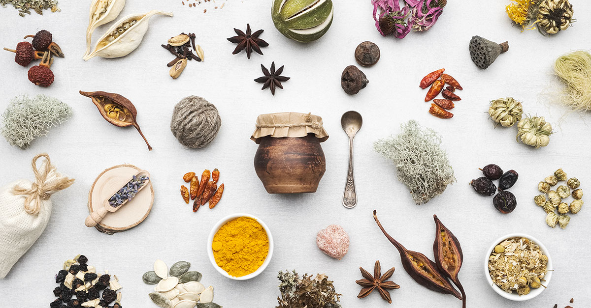 Healing herbs for salves and poultices